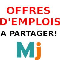 Offres Emplois Recherche Job Recrutements Cameroun Travail