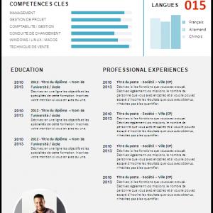 Service de traduction expresse de CV (Curriculum Vitae) en ligne