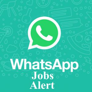 Groupe WhatsApp : Alertes Emplois et Stages au Cameroun