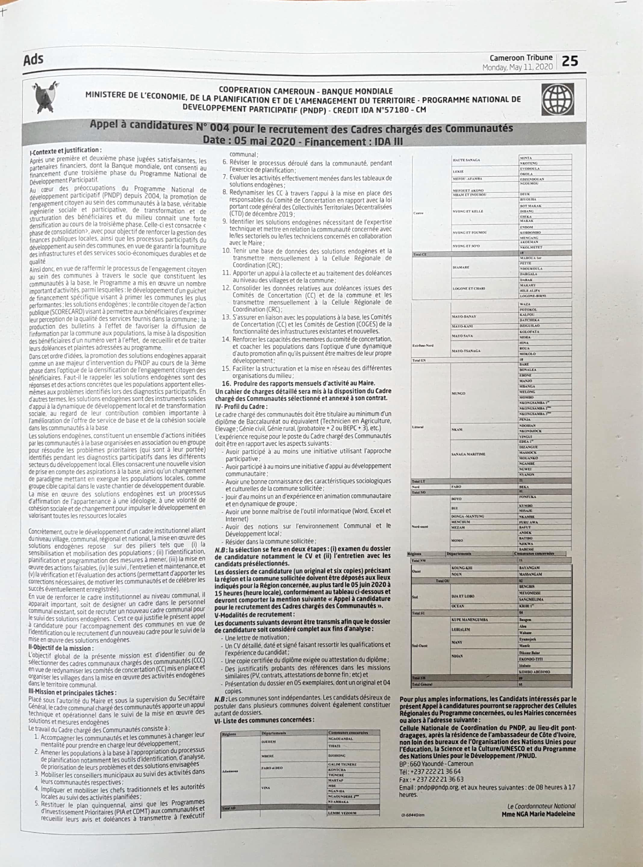 Emplois PNDP Cameroun